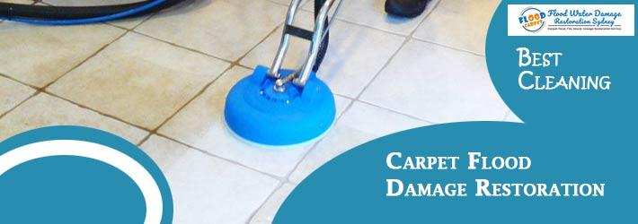 Carpet Flood Damage Restoration