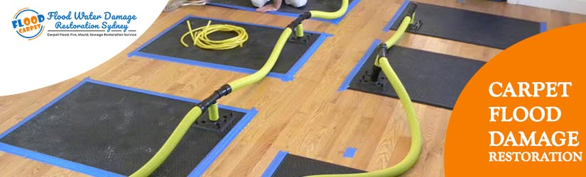 Carpet Flood Restoration Sydney
