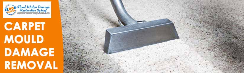 Carpet Mould Damage Removal Sydney