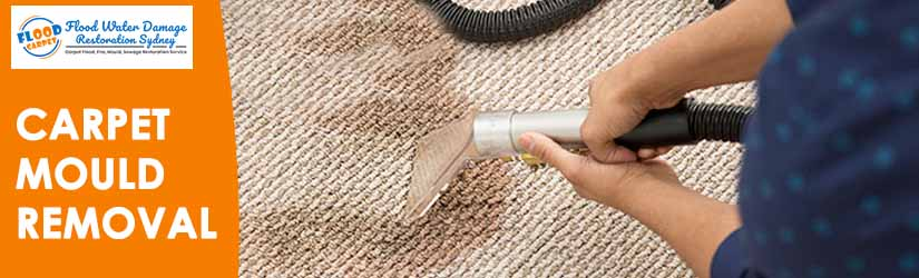 Carpet Mould Removal Service Sydney