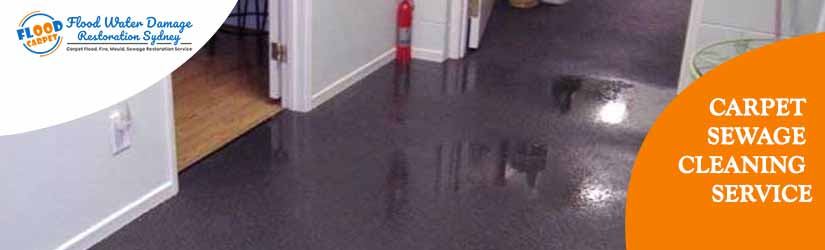 Carpet Sewage Cleaning Service Sydney