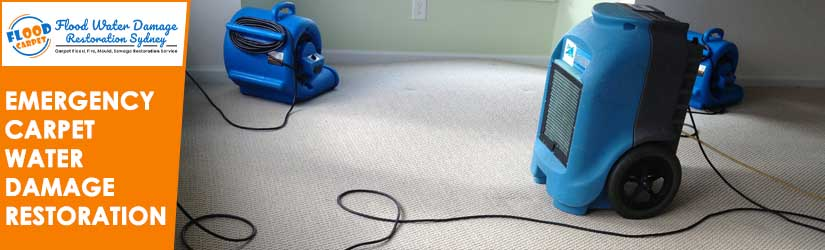 Emergency Carpet Water Damage Restoration Sydney