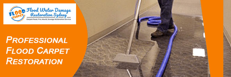 Professional Carpet Flood-Damage Restoration