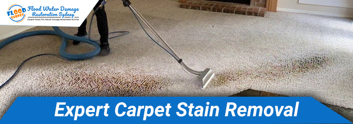 Expert Carpet Stain Removal